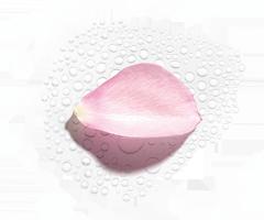 Hidrolato de rosa bio